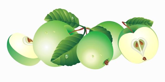 Zielone jabłka z liśćmi na białym tle