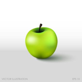Zielone jabłko w realistycznym stylu na białym