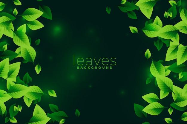 Zielone liście eko koncepcja projektowa tło