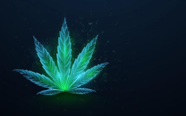 Zielone liście konopi z formułą cbd. rosnąca marihuana medyczna