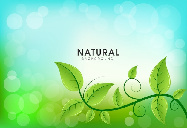 Zielone liście naturalnego tła