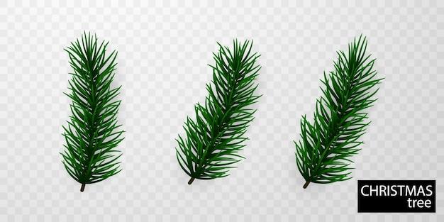 Zielone liście świąteczne do dekoracji świątecznych