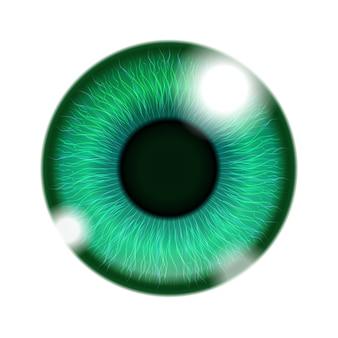 Zielone oko ludzkie na białym tle