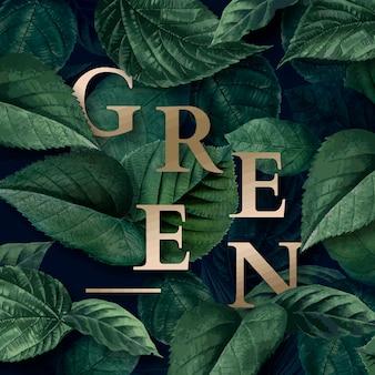 Zielone tło dżungli