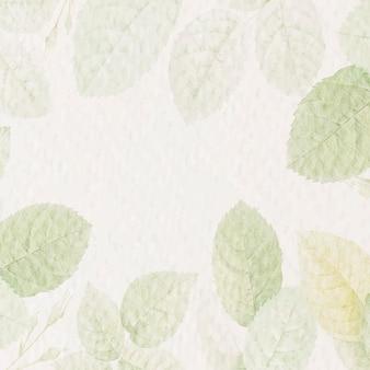 Zielone tło liści