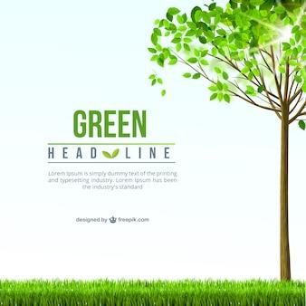 Zielone tło szablonu