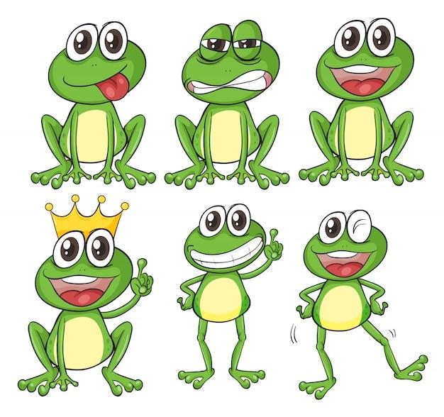 Zielone żaby