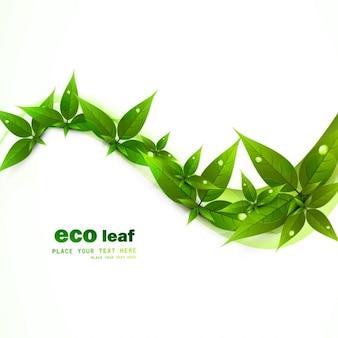 Zielony ekologii liście