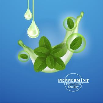 Zielony i świeży liść mięty pieprzowej