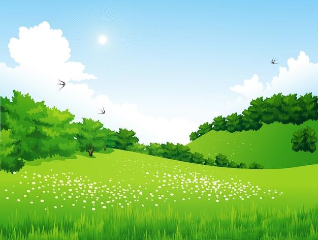 Zielony krajobraz z drzewami, chmurami, kwiatami. letnia łąka