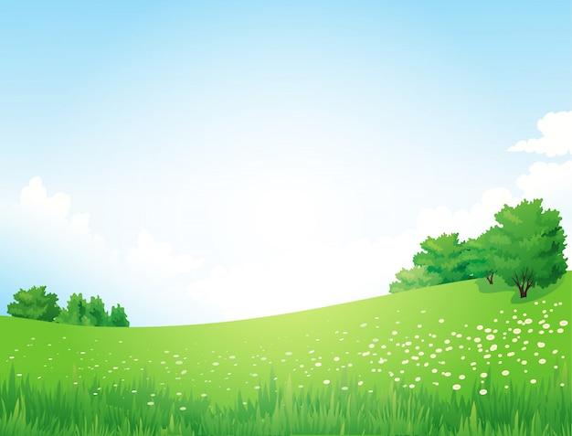 Zielony krajobraz z drzewami chmurnieje kwiaty