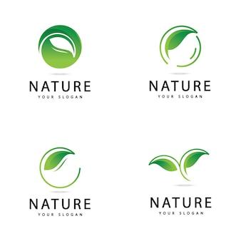 Zielony liść logo projekt ikony przyrody