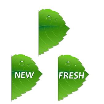 Zielony liść z ilustracją siatki gradientu