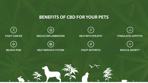 Zielony plakat informacyjny przedstawiający korzyści kannabidiolu dla zwierząt domowych z infografiką przedstawiającą korzyści i sylwetki zwierząt