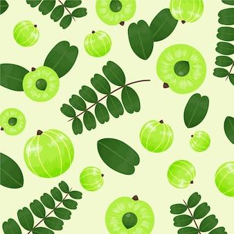 Zilustrowane ręcznie rysowane tła owoców amla