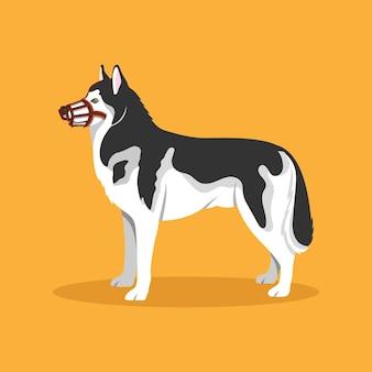 Zilustrowany płaski pies w kagańcu