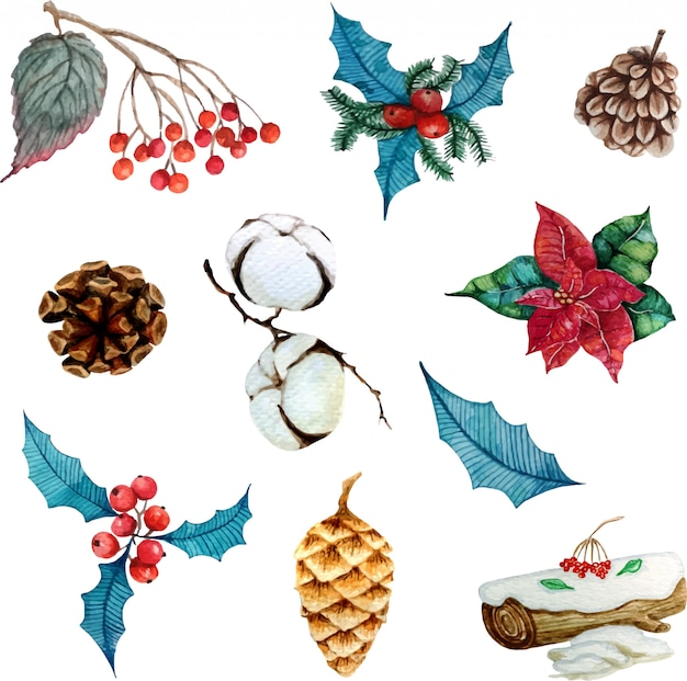 Zimowe elementy kwiatowe do projektowania lub naklejki