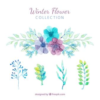 Zimowe kwiaty w akwarela niebieski, zielony i fioletowy