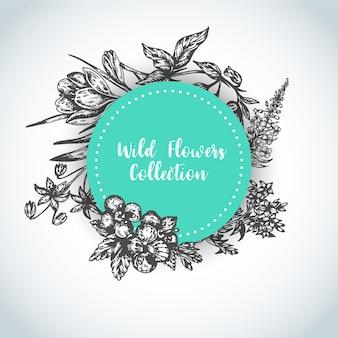 Zioła i kwiaty dzikiego tła vintage zbiór ilustracji wektorowych roślin
