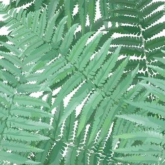 Zioła i liście botaniczny wzór. liść paproci naturalne tło. kwiatowy wzór roślin leśnych do dekoracji tropikalnej tapety. ilustracja wektorowa