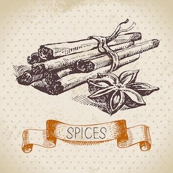 Zioła i przyprawy kuchenne. tło z ręcznie rysowane szkic cynamon