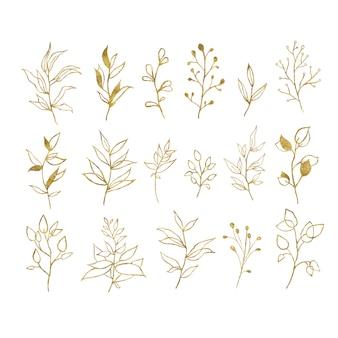 Złociści tropikalni liście odizolowywający na bielu