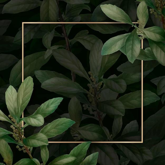 Złota ramka na tle liści
