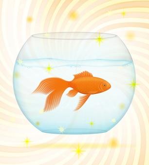 Złota ryba w przezroczystym akwarium.