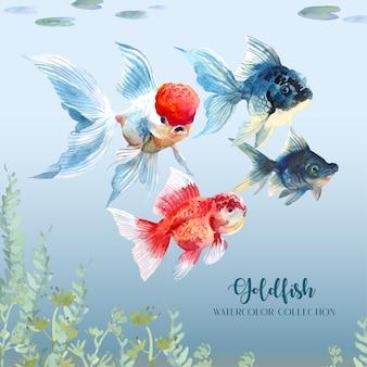 Złota rybka pływa pod wodą przez kolekcję roślin wodnych i liści lotosu.