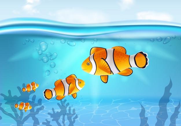 Złota rybka pod wodą