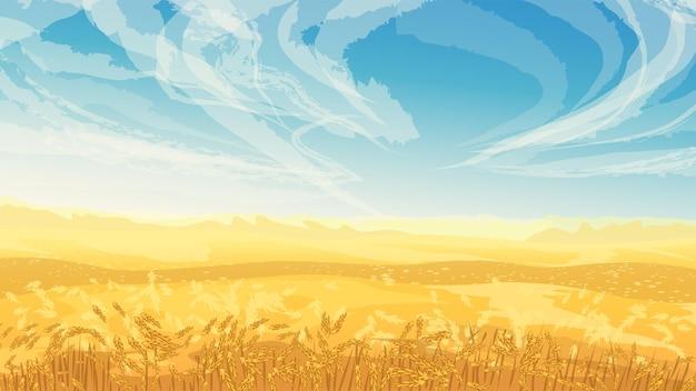 Złote pole koloru z pszenicznym niebieskim niebem