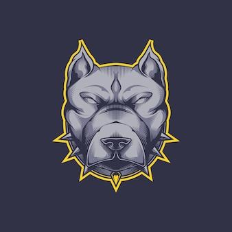 Zły głowa psa pitbull