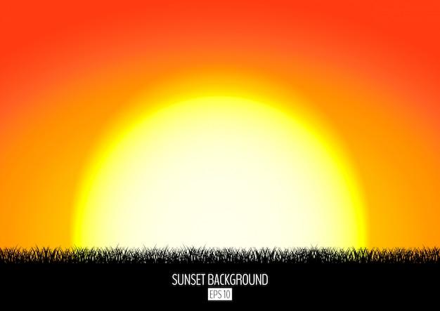 Zmierzchu lub wschodu słońca tło z czarną trawy sylwetką. płonące słońce zachodzi nad horyzontem.