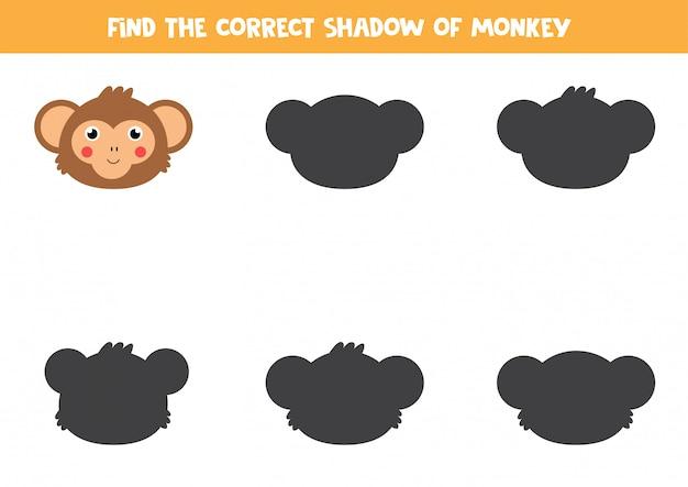 Znajdź odpowiedni cień głowy małpy. logiczna gra dla dzieci.