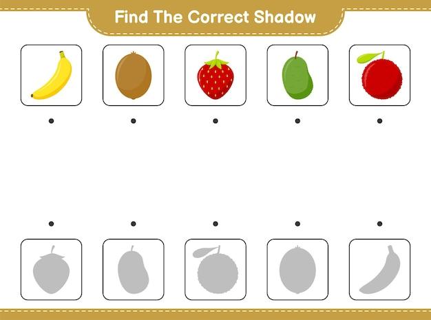 Znajdź odpowiedni cień. znajdź i dopasuj odpowiedni cień fruits. gra edukacyjna dla dzieci, arkusz do druku