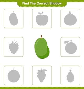 Znajdź odpowiedni cień. znajdź i dopasuj odpowiedni cień jackfruit. gra edukacyjna dla dzieci, arkusz do druku