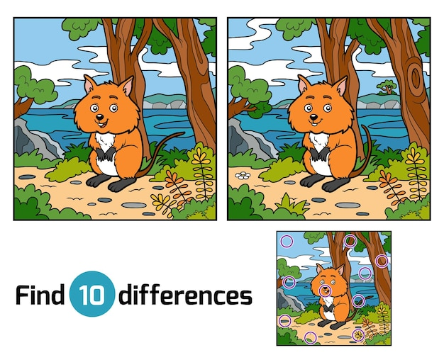 Znajdź różnice edukacyjne dla dzieci, quokka
