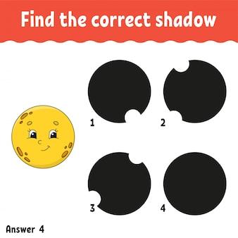 Znajdź właściwy cień.