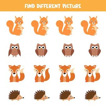 Znajdź zwierzę w rzędzie, który różni się od innych.