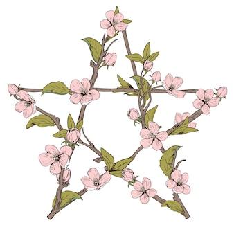 Znak pentagram wykonany z gałęzi z kwitnącego drzewa. ręcznie rysowane botaniczny różowy kwiat na białym tle. ilustracji wektorowych.