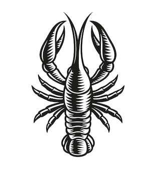 Znak zodiaku rak na białym tle