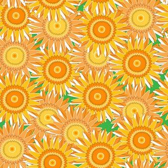 Żółta chryzantema latem
