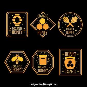 Żółta miodu etykiety kolekcji