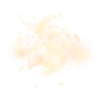 Żółte pomarańczowe płatki kwiatów spadają. eksplozja hipnotyzujących romantycznych kwiatów.