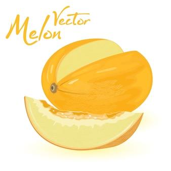 Żółty, owalny melon z kawałkiem go