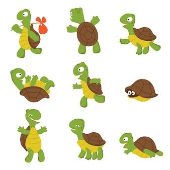 Żółw kreskówkowy. ładny żółw dzikich zwierząt znaków na białym tle