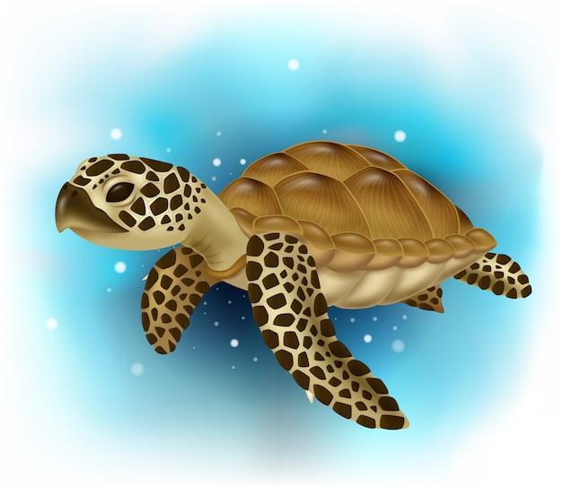 Żółw morski pływanie w oceanie