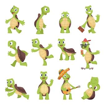 Żółwie kreskówkowe. szczęśliwe śmieszne zwierzęta z kolekcji żółwia