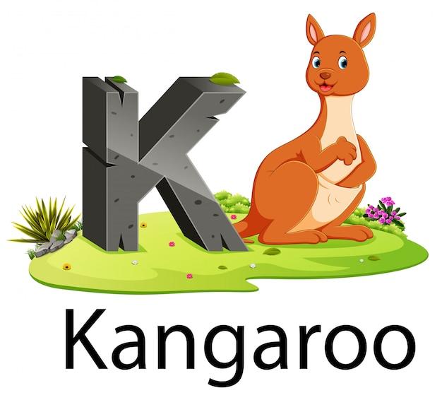 Zoo alfabet zwierząt k dla kangura z uroczym zwierzęciem