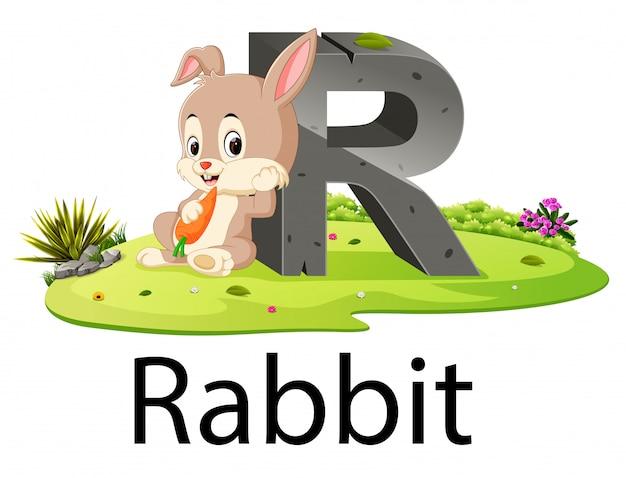 Zoo alfabet zwierząt r dla królika z dobrą animacją
